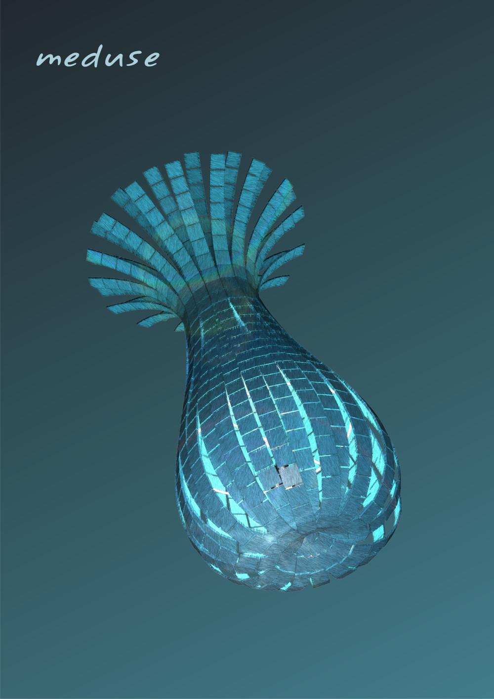 meduse B43 (2)